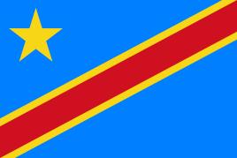 刚果金FERI电子货物跟踪单