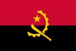 安哥拉CNCA电子货物跟踪单