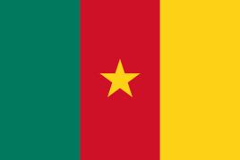喀麦隆ECTN/BESC电子货物跟踪单